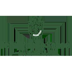 DPS Ranchi